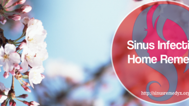 Sinus Infection Home Remedy