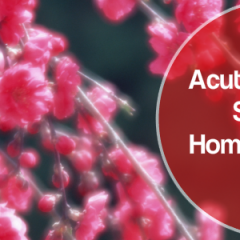 sinusitis home remedies,acute sinusitis home remedies,chronic sinusitis home remedies