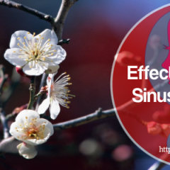Natural Sinus Remedies